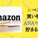 Amazonで買い物をしてANAマイルを2重取りで貯める2つの方法