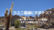 ウユニの観光スポット